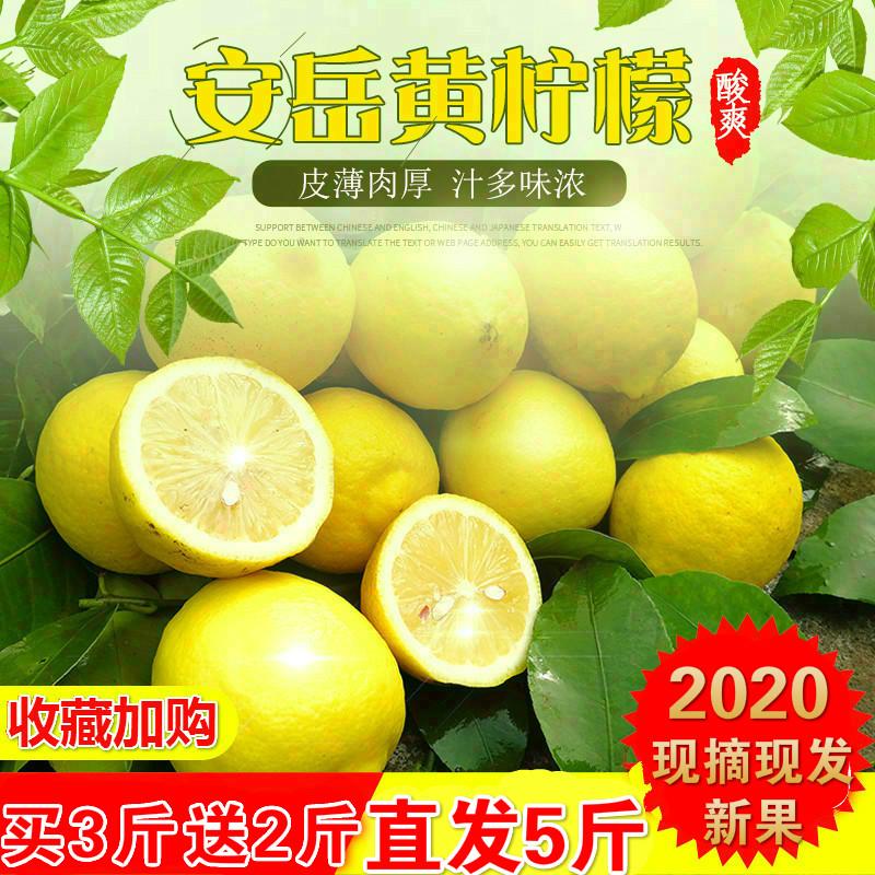 现摘现发安岳二三级黄柠檬统果5斤当季新鲜水果皮薄多汁批发包邮