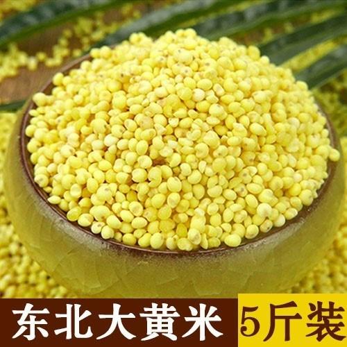 东北大黄米5斤农家新米糯小米粘豆包粽子小米粥糯黏黍子米粘黄米