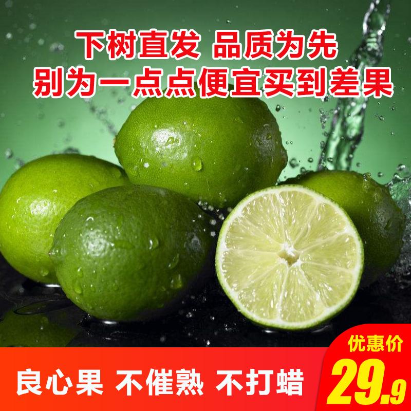 柠果乐 青柠檬5斤整箱带箱新鲜一二级柠檬当季新鲜水果中小果
