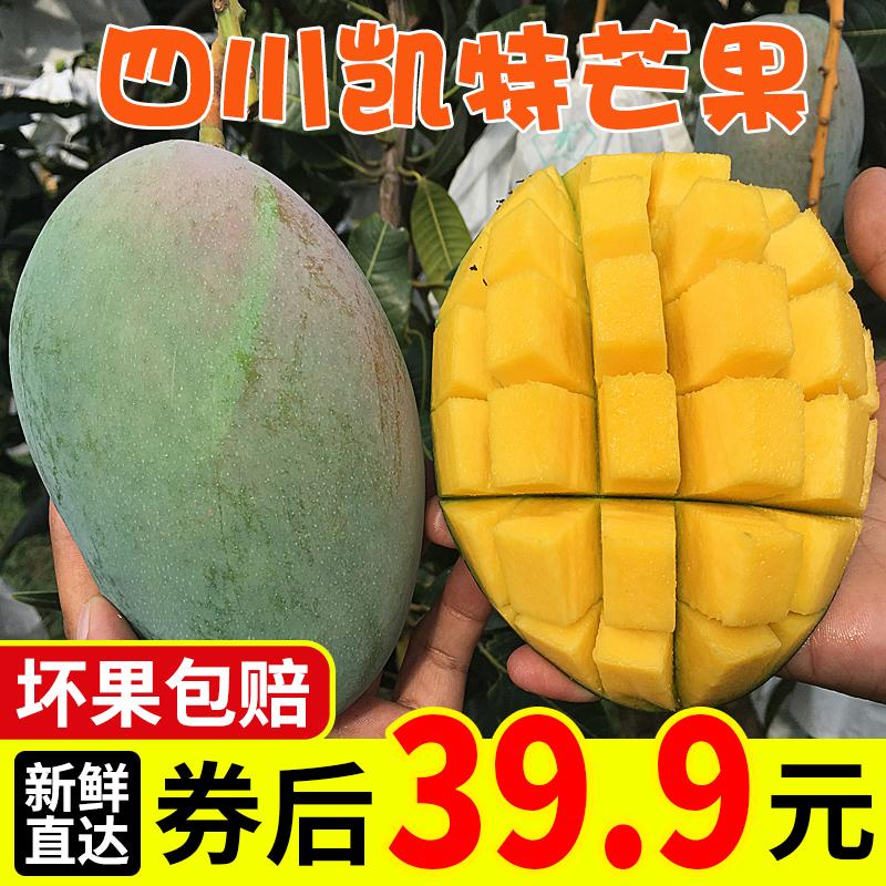 四川攀枝花凯特芒果新鲜水果大芒果整箱9斤纯甜大果青皮芒批发