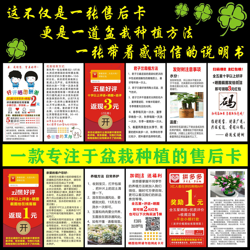 Cash back card customized sun print good evaluation card red packet cash card spot flower planting instructions pot planting method