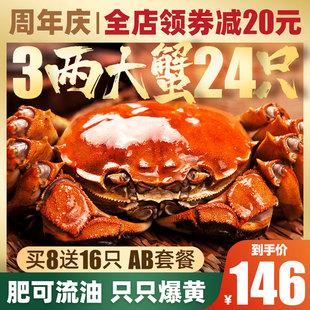 24只特大螃蟹鲜活现货六月黄大闸蟹超大阳澄湖镇水产公母蟹礼盒装