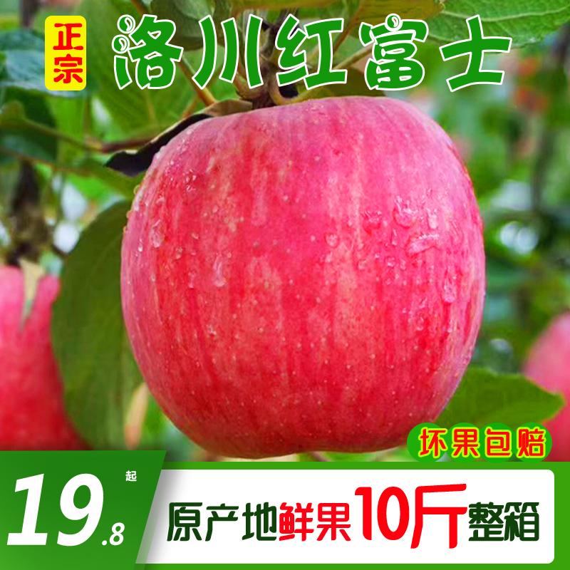 正宗洛川苹果脆甜陕西延安红富士冰糖心水果新鲜当季整箱10斤包邮