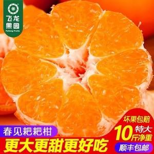 四川蒲江春见耙耙柑新鲜特级大果10礼盒杷杷巴巴粑粑柑纯甜橘子