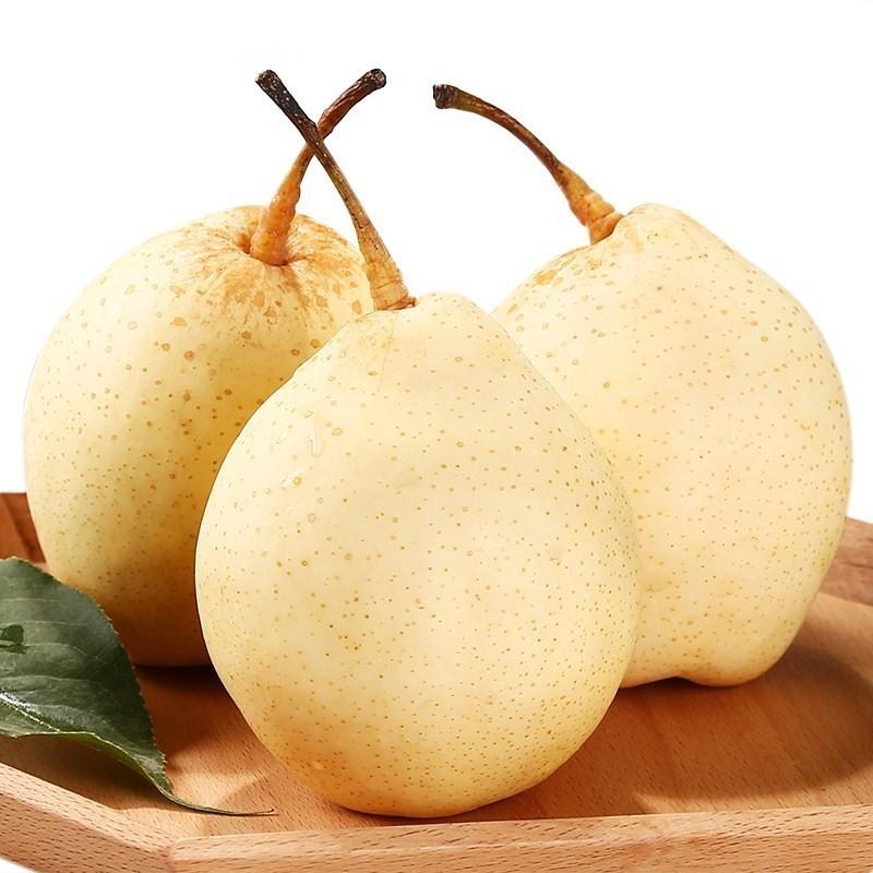 正宗河北鸭梨10斤脆甜多汁母梨子败火雪梨白梨应季新鲜水果