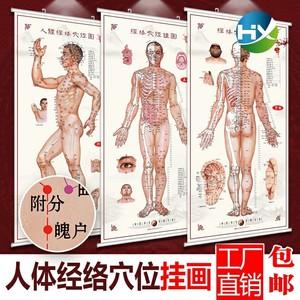人体穴位图家用家用艾灸穴位图家用图解耐用身体大挂图中医馆全身