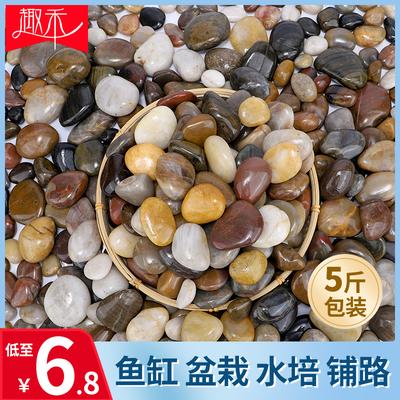 鹅卵石雨花石原石天然花盆栽鱼缸装饰鹅软石子庭院铺路五彩小石头