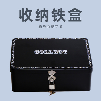 Japan RQS famous device special adult equipment accessories storage bag sex toys storage tin box with lock