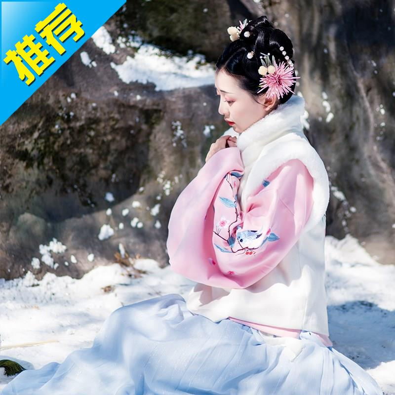 Pipa female collar suit sleeve skirt Chinese style traditional costume ancient costume daily Ming system