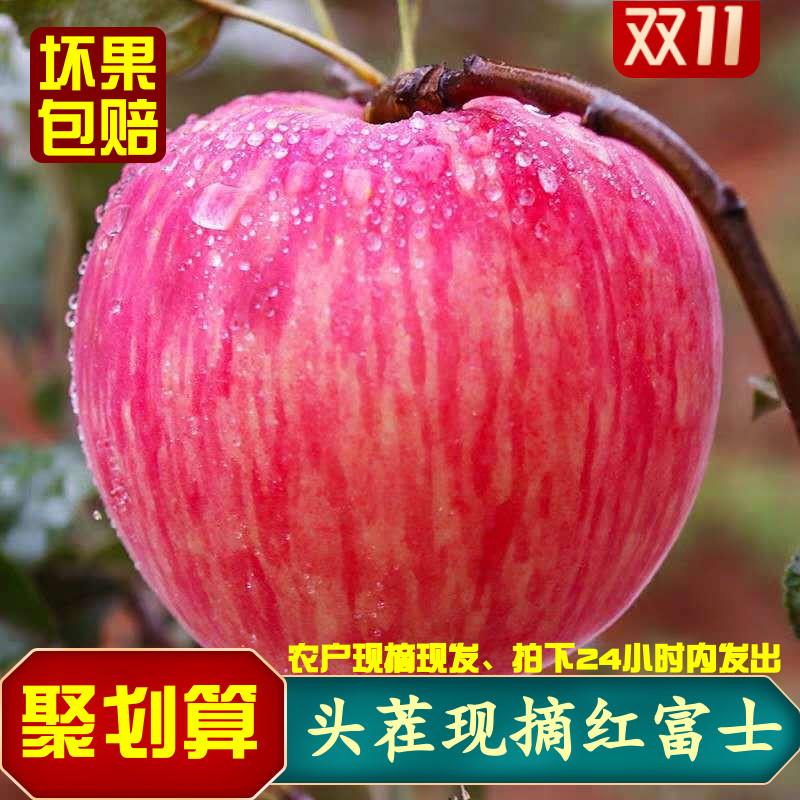 新鲜陕西红富士冰糖心丑苹果