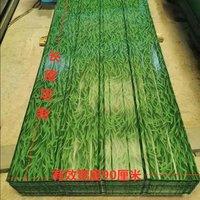 小草绿围墙板彩钢板隔热板彩钢瓦铁皮围栏石棉瓦遮雨棚屋檐亮瓦