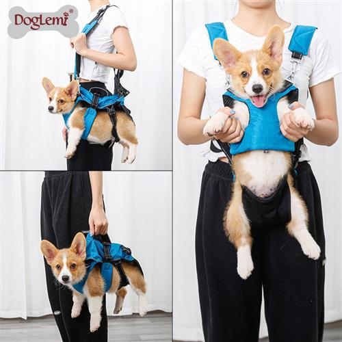Multifunctional pet backpack small n dog medium dog Teddy dog chest strap go out portable single shoulder bag 3 in 1