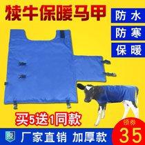 兽纺丝崽护幼公小牛过冬背心保温母胃调节实用棉幼马用马甲可驱寒