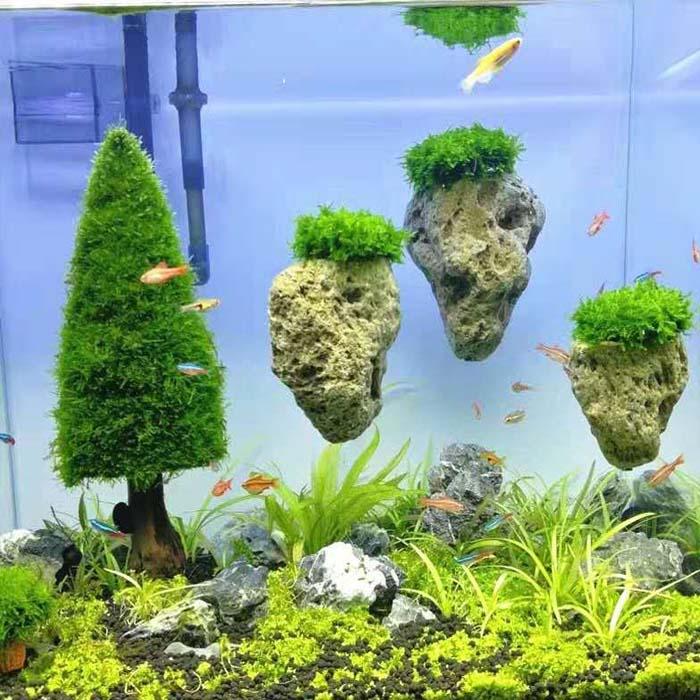 天然莫斯水草悬浮石阿凡达漂浮石微景观观赏鱼缸草缸造景