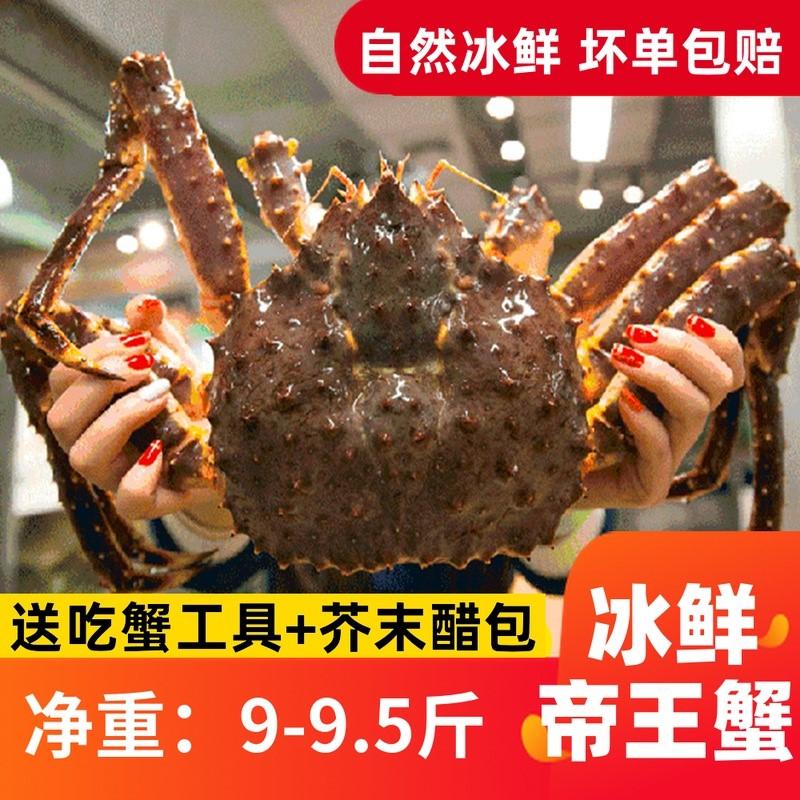 中國代購|中國批發-ibuy99|oppo|9-9.5斤冰鲜帝王蟹新鲜鲜活海鲜10特超大澳洲奥波龙虾长脚大螃蟹