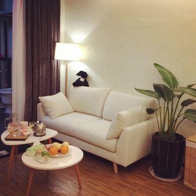 网红款出租房卧室简约双人沙发