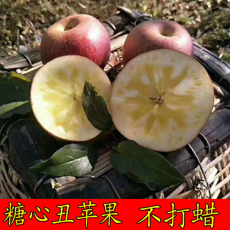 Daliang Mountain specialty Lugu Lake Yanyuan ugly Apple wild rock sugar heart red Fuji fresh fruit without waxing