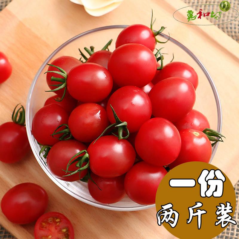 新鲜圣女果小番茄樱桃西红柿 新鲜孕妇宝宝水果农家自种水果2斤
