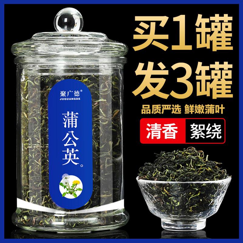 蒲公英茶叶非特级野生婆婆丁茶蒲公英带根茶叶子干草红茶新鲜花茶
