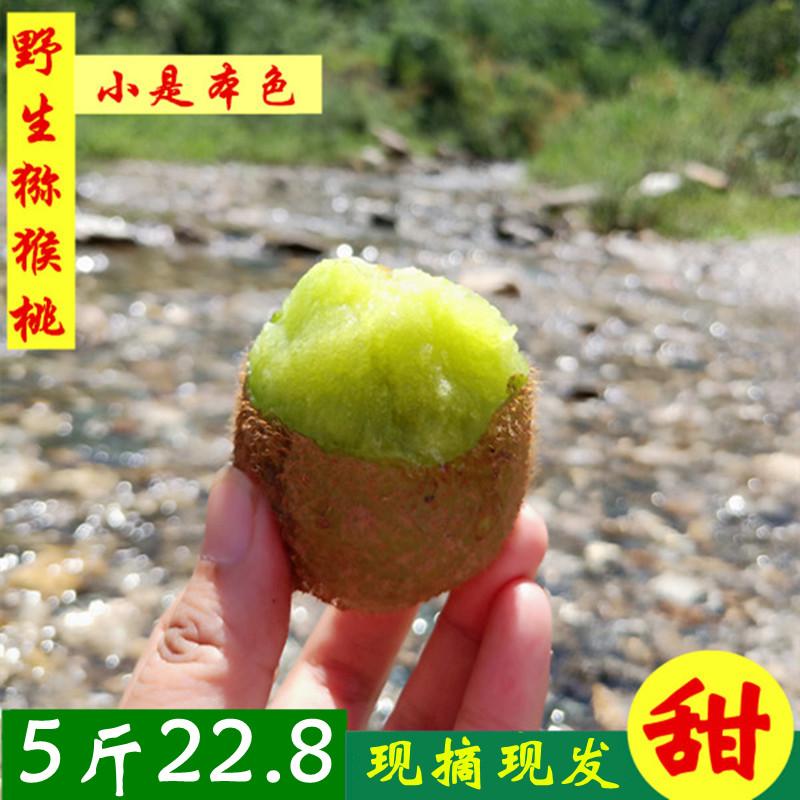 11-29新券猕猴桃绿心野生小奇异果眉县周至新鲜水果5斤包邮非红心江山