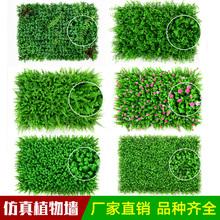 直销假草坪带花塑料草仿真绿植物墙高草加密室内阳台装饰人造草皮