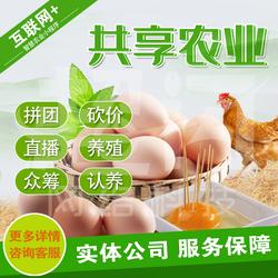 三沙共享农业小程序智慧农场养殖鸡场众筹物联网系统公众号开发