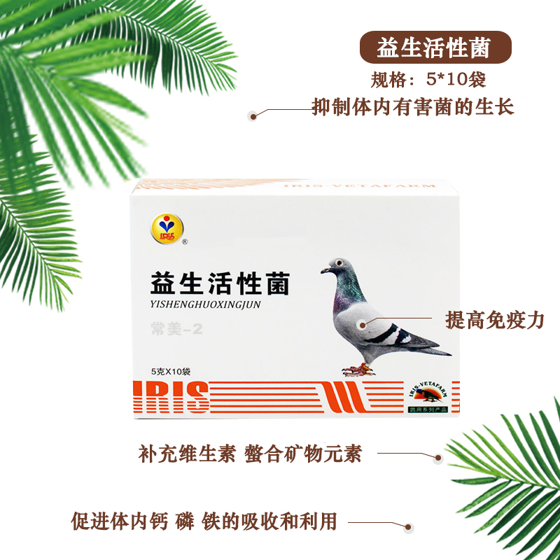 爱丽丝鸽药出品益生活性菌种鸽信鸽鹦鹉八哥鹩哥朱鸟孔雀肠道感染