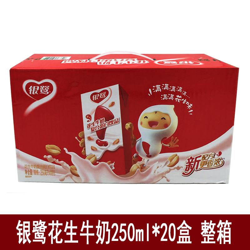 银鹭花生牛奶复合蛋白饮料250ml*20盒装 银鹭花生奶 早餐奶