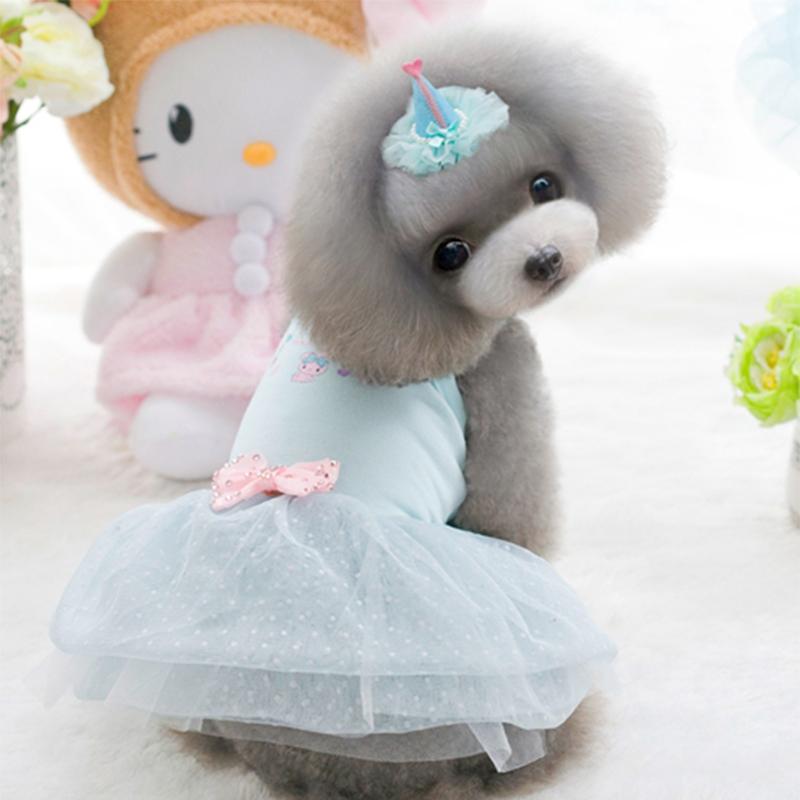 狗狗衣服夏裝寵物泰迪貴賓比熊公主裙茶杯犬博美吉娃娃春 裙子