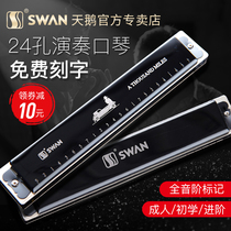 Swan harmonica 24 Hole polyphonic C tune advanced adult children Beginner students professional playing male and female gag harp