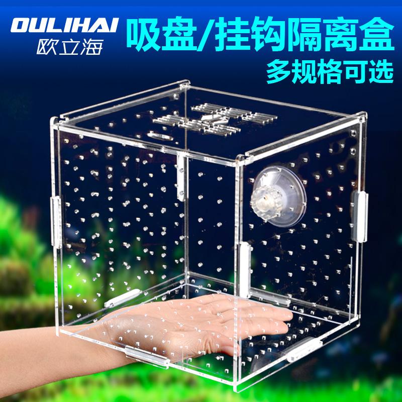 Изоляция коробка аквариум прозрачной воды гонка рыба рассада люк устройство сложный колонизация коробка свойство одноканальный двойной больше сетка изоляция чистый акрил