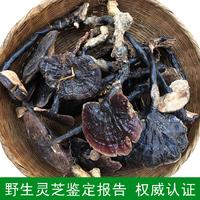 Темно Горный чистый дикий Линчжи обрезка Zizhi аутентичный натуральный дикий фиолетовый Линчжи Линжи черный Ломтик чико 250г