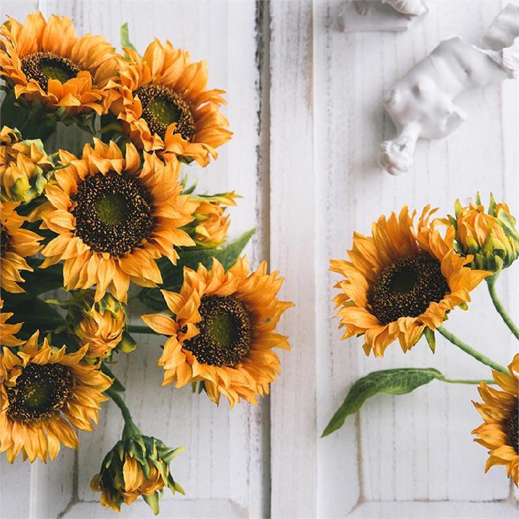 兰花绢花夏天装饰品管道向日葵仿真花拍照花艺壁挂超大干花瓶铁艺