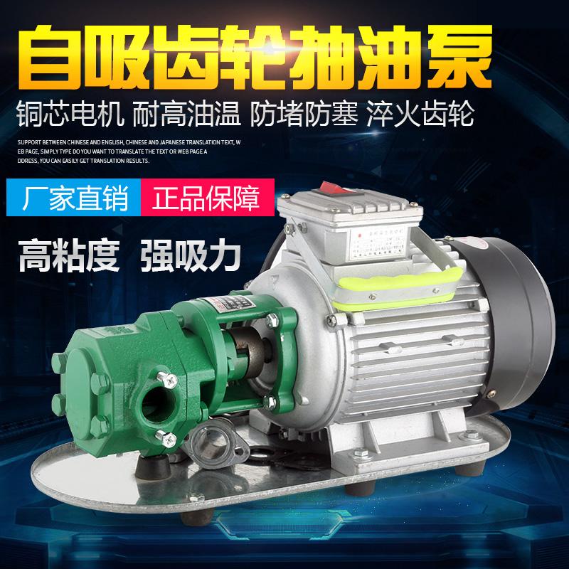 新品特价电动铸铁包邮220V抽油泵机油泵液压油煤油齿轮自吸式水泵