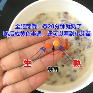 红小扁兵豆土耳其扁豆子杂粮小扁豆