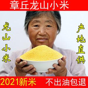 2021新鲜小米】山东章丘龙山小米新5斤小黄米粥材料粮食农家特级