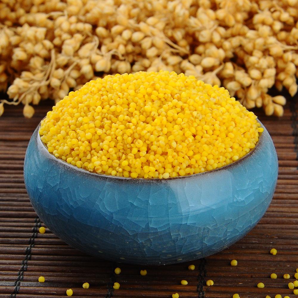 新东北有机红谷黄小米2500g(买就送半斤共5.5斤)特产杂粮小米粥