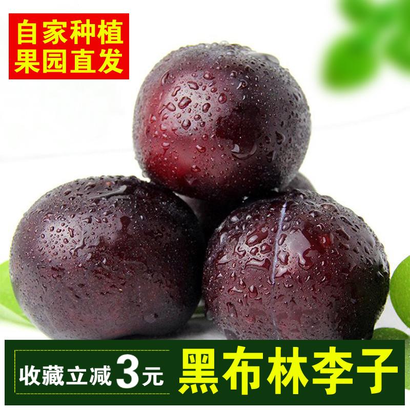 陕西黑布林李子新鲜孕妇水果整箱批发5斤包邮当应季时令脆甜青李