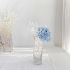 漫岛 澄净深情蓝色绣球花白色满天星干花ins北欧玻璃瓶家居装饰