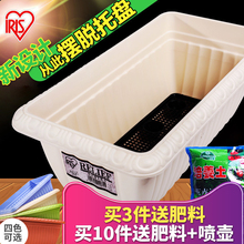Alice flower pot rectangular plastic oversize Alice wall hanging vegetable and meat potted balcony vegetable planting