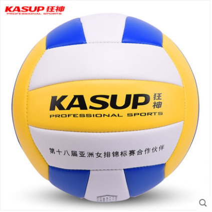 Authentic ecstasy / volleyball No.5 adult men and womens examination training inflatable soft and hard ball for middle school students
