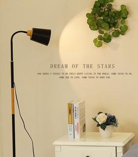 简约现代可调光遥控阅读落地台灯LED北欧落地灯创意客厅卧室书房