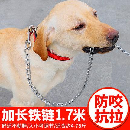 宠物铁链防咬断狗狗牵引绳泰迪金毛遛狗绳狗链子大型中小型犬项圈
