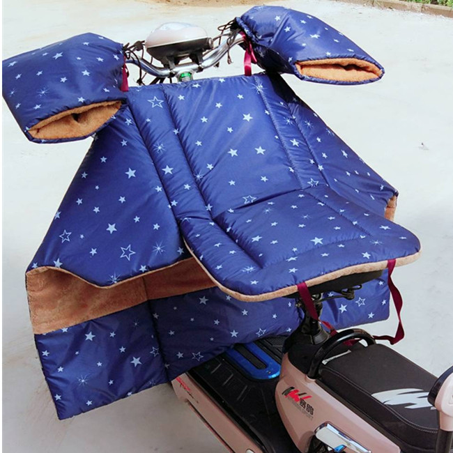 [limited to 100 pieces] electric car wind shield in winter