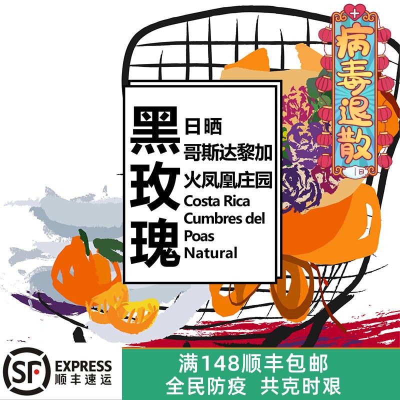 19产季哥斯达黎加火凤凰庄园精致日晒高甜度精品手冲咖啡豆 200g