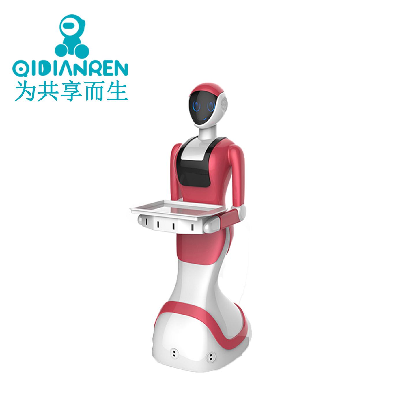 Обслуживание роботов Артикул 584434100081