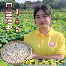 新货湘潭特产无芯白莲农家自产干货去芯磨皮白莲子寸三莲湘莲500g