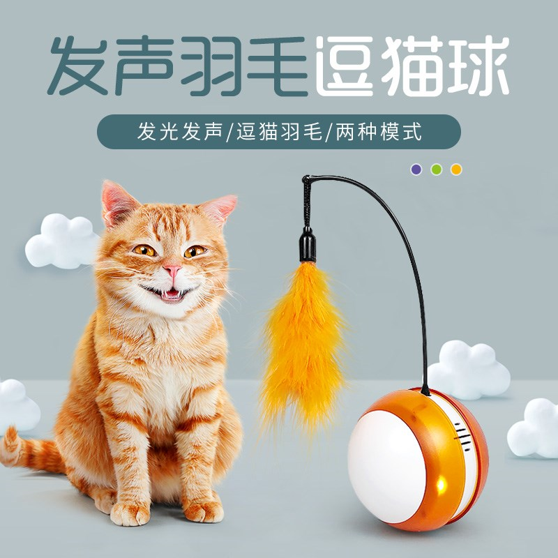 Playing cat and dog vibrato, the same automatic cat, dog, toy ball, tiktok, feather, and feather, from the hi rolling ball.