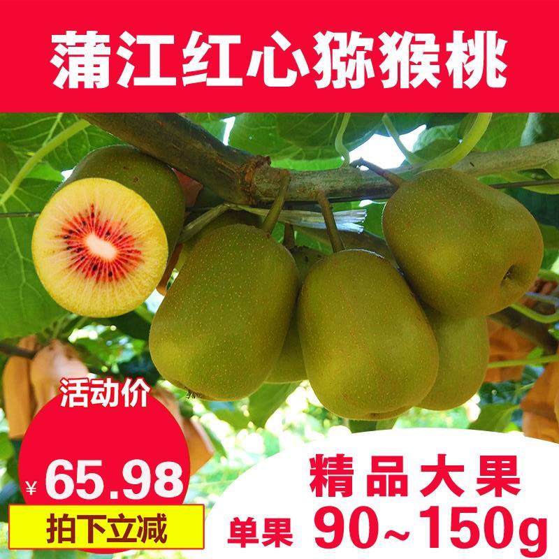 四川蒲江红心猕猴桃大果奇异果孕妇水果新鲜时令水果现摘5斤包邮
