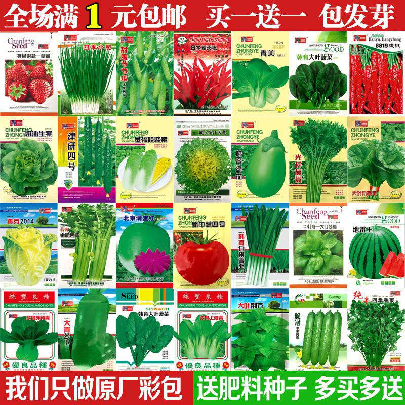 蔬菜种子四季播种阳台农家庭院盆栽生菜菠菜韭菜香菜草莓籽孑包邮